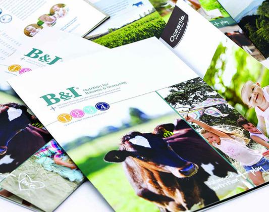 Oceania-BI-brochure-cover2-s